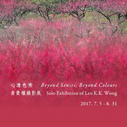 Beyond Senses, Beyond Colours • Leo K. K. Wong
